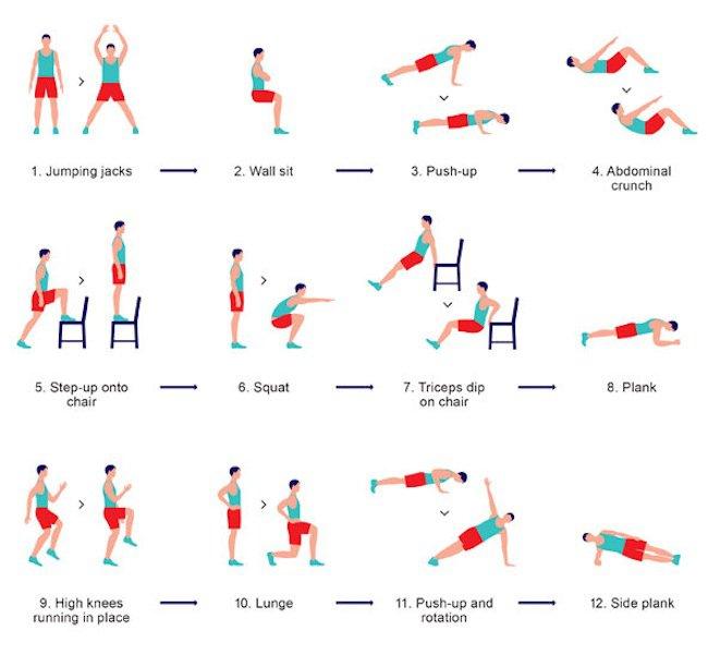 Populaire Exercice De Muscu A La Maison | Segu Maison HW63